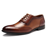 Brogue Esculpido Couro de Condimento Apontado Toe Business Oxfords