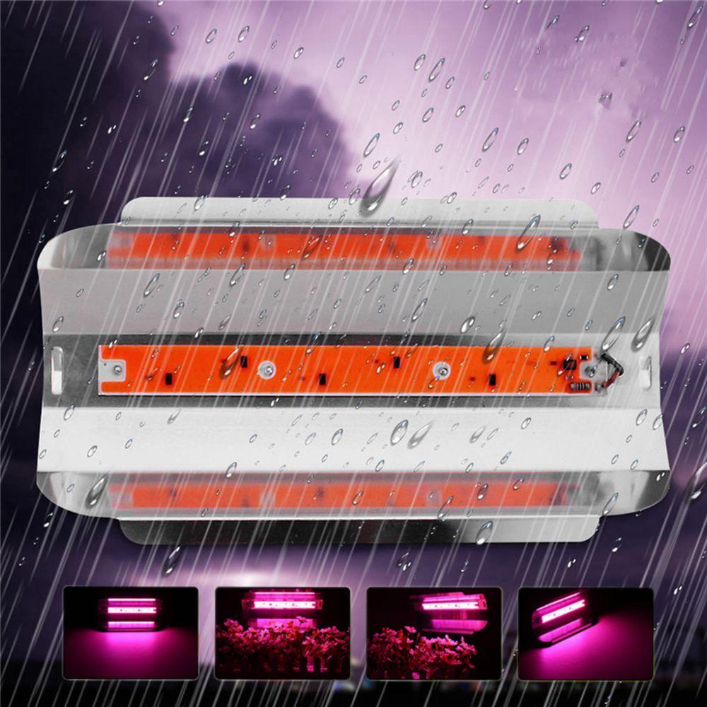 30W / 50W / 80W Full Spetrum LED Floodlight Водонепроницаемы COB LED Grow Light DIY светодиодный чип AC110V / 220V