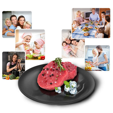Frozen Food Defrost Meat Thawing Plate Fast Defrosting Tray Rapid Thaw Board